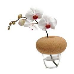 Vase Cantine